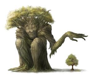 tree-elder
