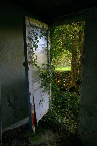 doorway-garden